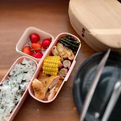 キッチングッズ/旬/柳宗理/お弁当/ランチ/旬を楽しむ 子どものお弁当。 手の込んだモノは作れま…