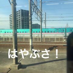 LIMIAおでかけ部/フォロー大歓迎/おでかけ/旅行/風景/建築/... 朝の通勤電車から見える新幹線たちー!車内…(4枚目)