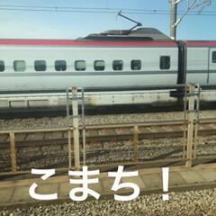 LIMIAおでかけ部/フォロー大歓迎/おでかけ/旅行/風景/建築/... 朝の通勤電車から見える新幹線たちー!車内…(1枚目)