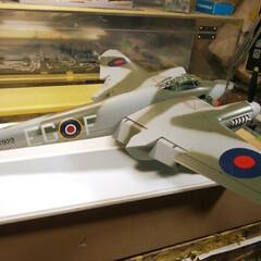タミヤ 1/32 エアークラフトシリーズ No.26 イギリス空軍 デ・ハビランド モスキート FB Mk.VI プラモデル 60326 | タミヤ(その他キッチン、日用品、文具)を使ったクチコミ「イギリス空軍のデ・ビハラント・モスキート…」