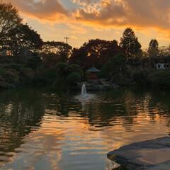 水戸/フォロー大歓迎/旅行/秋/風景/おでかけ/... 水戸の天狗党の慰霊碑とその庭園に行きまし…