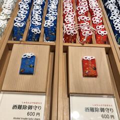 神社/パワスポ巡り/フォロー大歓迎/旅行/旅 来宮神社⛩の酒難避けお守りです😊これこら…