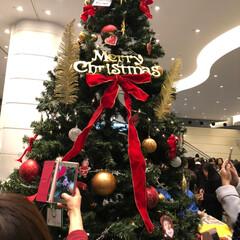 おうち/2018/フォロー大歓迎/クリスマス/クリスマスツリー/旅行/... ホンギのクリスマスライブ🎅に行きました💞…(3枚目)