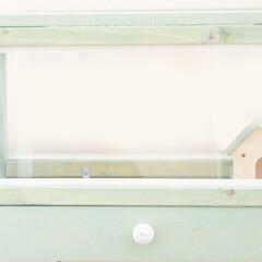 ハムスターケージ/ハムスター/ペット/DIY/インテリア 「ハムスターが恋するケージ」です。 引き…