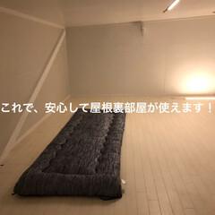 屋根裏部屋/屋根裏/収納階段/隠れ家/DIY/日曜大工/... 屋根裏部屋に上がる天井収納階段に、屋根裏…(10枚目)