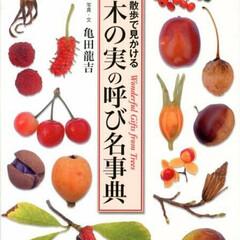 木の実/事典/呼び名/散歩/秋 色々な木の実が載っているので、自分が見つ…