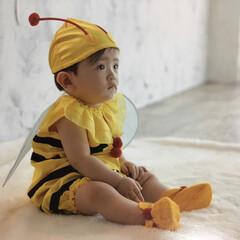息子/蜂/春 春ですね🌸暖かいですね🙌 今日は息子が昼…