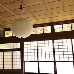 電気の傘/民宿/古民家/GW/旅行 両親、姉夫婦、私の家族の計7人で、熊本の…