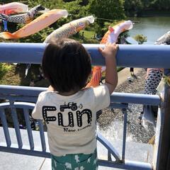 子どもの日/こいのぼり/GW/おでかけ/風景 昨日、濃施山公園へお出かけした時の写真で…