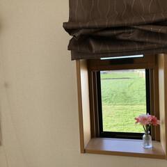 朝/冬/おうち/風景 ベッド横の小窓から見える風景です☆畑の緑…