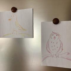 冷蔵庫/菊池亜希子/落書き/鳥/キッチン なぜこんなに鳥さんの投稿が続いているのか…