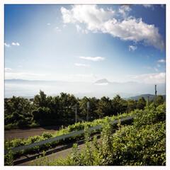 夏/海/空/平成最後の夏 今年の夏の思い出は広島と岡山、宇和島に豪…