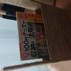 フォロー大歓迎/本立て/シナモン/小桜インコ 悪い事ばかりしてるシナモン😥 薄い本入れ…(4枚目)