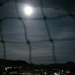 フォロー大歓迎/綺麗な月 昨日は、とても綺麗なお月様でした😊(1枚目)