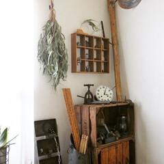 模様替え/ランプシェード/ランプ/ライト/照明/ナチュラル/... ランプ② キッチンか玄関に飾ろうと 名古…