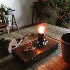 ダイニング/リビング/照明/ウォールランプ/ランプ/グリーンのある暮らし/... ついつい集めてしまうランプ① こちらはヴ…