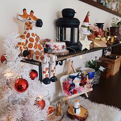 クリスマス/Xmas/Christmas/クリスマス飾り/リビングインテリア/クリスマスインテリア 今年の我が家のクリスマス飾り 毎年ガチャ…