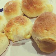 初めてのパン作り/手作りパン/パン 一足早く春休みな長女が突然 「メロンパン…(1枚目)