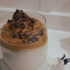 ダルゴナコーヒー/家カフェ/おしゃれ/動物モチーフグッズ ダルゴナコーヒー作ってみました✨ ガチャ…
