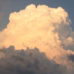 自然/空 昨年撮影したものですが、雲のモコモコ感凄…