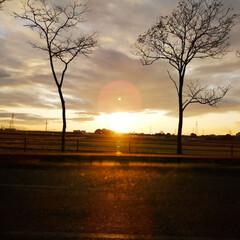 夕陽/空/夕焼け/買い物帰り/風景/次のコンテストはコレだ!/... 今日は祝日でしたね😊 こちらは生憎の雨。…