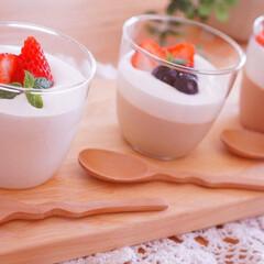 ゼラチン/牛乳消費/レシピ/手作りデザート/スイーツ作り/スイーツ/... ミルクプリン?ブラマンジェ?パンナコッタ…