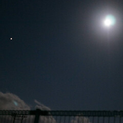 夜のお散歩/お団子なし/雨上がり/夜空/月/十五夜/... 中秋の名月🎑✨  こちらの地方、お月様よ…