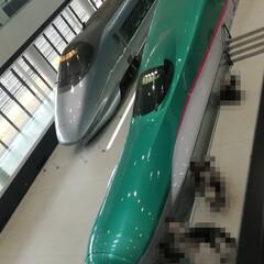 つばさ/MAX/E1系/400系/引退した新幹線/鉄道博物館/... 大宮の鉄道博物館に 行って参りました〜\…(3枚目)