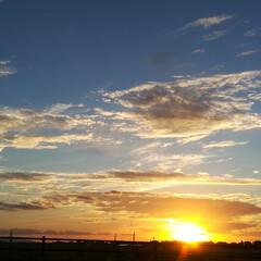 雲/空/夕焼け 本日もキレイな夕焼け空でした😊  ようや…
