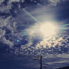 太陽/空/朝 ずっと雨続きだったけど、久し振りに晴れた…