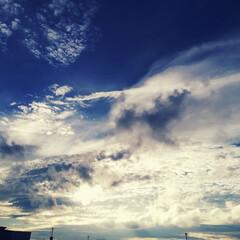 夕方の空/雲/空 空が高い。 秋の気配を感じるね。