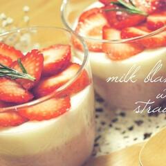 ローズマリー/食後のデザート/おうちカフェ/手作りスイーツ/いちご/赤と白/... いちごムース🍓 〜その②〜  こちらはブ…