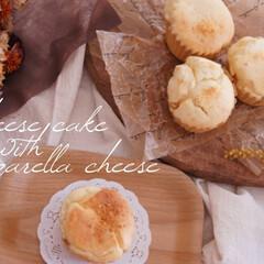 サマーシトラスティー/今日はのんびりDay/おうちカフェ/おうち時間/のび〜るチーズケーキ/チーズ3種/... のび〜るチーズケーキ❁⃘*.゚  チーズ…(1枚目)