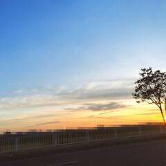 青空/夕焼け/雲/風景/空 久し振りに空の写真を。  ここ最近の空た…