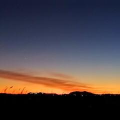 星/空/夕焼け/おでかけ/リミアの冬暮らし 買い物かごから帰宅途中、夕焼けがとてもキ…