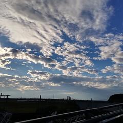 帰り道/雲/空/秋晴れ/秋空/秋 公園の帰り道の空。 まだ15:20くらい…