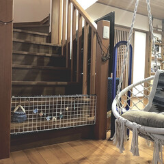ダイソン TP02IB Dyson Pure Cool Link 空気清浄器付タワーファン アイアン/サテンブルー(空気清浄機)を使ったクチコミ「16歳のシニア犬が、 二階に上がらない様…」