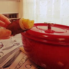 暖かい暮らし/カルカルブリックレンガ/焼き芋/遠赤外線の暖かさ/ペットと暮らす/ペレットストーブ/... 寒くなると大活躍のペレットストーブです。…(2枚目)