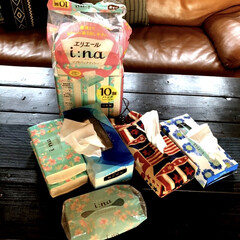 LIXILのドア/洗濯アイテム/カインズ/ニトリ/洗濯干しスペース/エリエール贅沢保湿/... 花粉症の私には必需品の ✴︎エリエール贅…(1枚目)