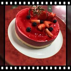 ムースケーキ/手作りケーキ/ムーミン一家のクリスマス/和室のクリスマス/シンプルクリスマス/クリスマス2019/... 大人だけのクリスマスは、地味です。 が、…(4枚目)