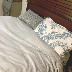 木製ブラインド(ヴェントMBR88X138) | ニトリ(その他カーテン、ブラインド、レール)を使ったクチコミ「頭寒足熱って事で、 この季節もニトリの枕…」