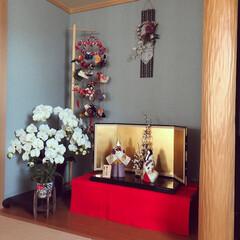 和雑貨/シャコバサボテン/光触媒観葉植物/和風リース/吊るし飾り/和が好き/... シンプルな木目込みの立ち雛は、 飾るのに…