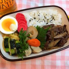 お弁当/ランチ 牛ごぼう弁当