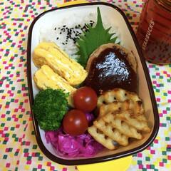お弁当/ランチ ハンバーグ弁当vol2😝