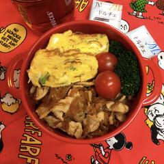 お弁当/ランチ 東海文化フェス 部活あと少しになります。…