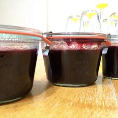 ブルーベリー/jam/ジャム/WECK 庭で収穫したブルーベリーで ジャム作りま…