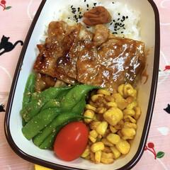 お弁当/ランチ 豚肉照り焼き味弁当