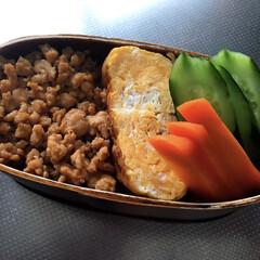 お弁当/ランチ 自弁😋鶏そぼろ弁🐓