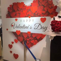 リサ・ラーソン/ユーハイム/ROYCE/バレンタインショコラの祭典/バレンタインデー/スイーツ Valentineday❤ 仕事帰りにシ…