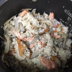 鮭と舞茸と牛蒡の炊き込みご飯/炊き込みご飯/夕飯/グルメ/おうちごはん/おうちごはんクラブ 今夜は炊き込みご飯 舞茸、牛蒡、蒟蒻、油…